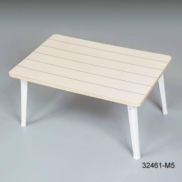 32461-M5 Portable learning table