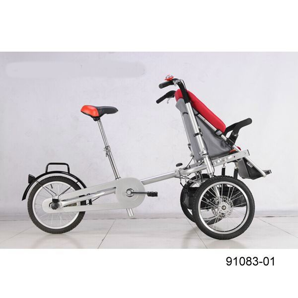 91083-01 Mother & Baby Bike